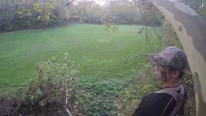 Southern Ohio Food Plot